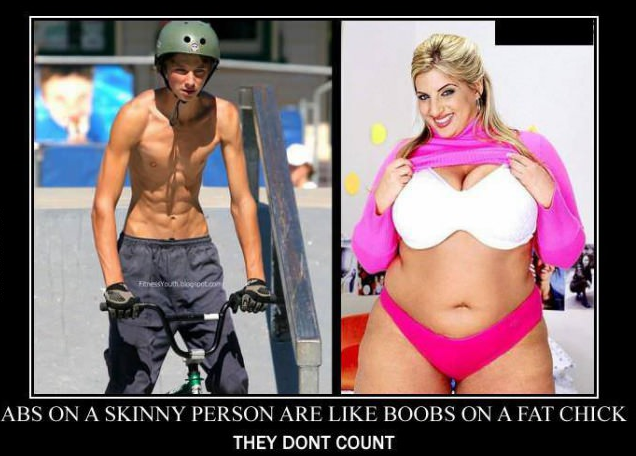 Why do guys not like fat chicks