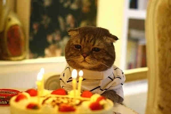 Today is my birthday. This is how I feel because nobody knows.