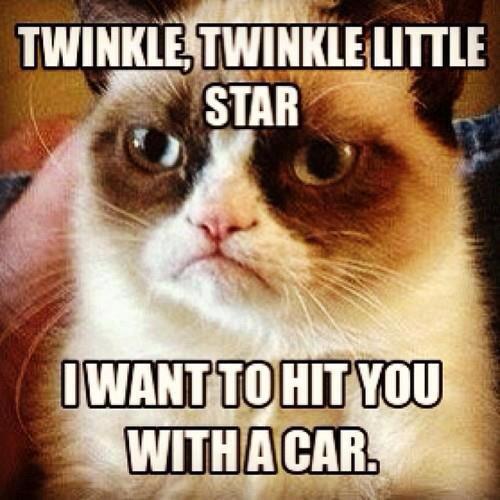 twinkle twinkle mother ***er