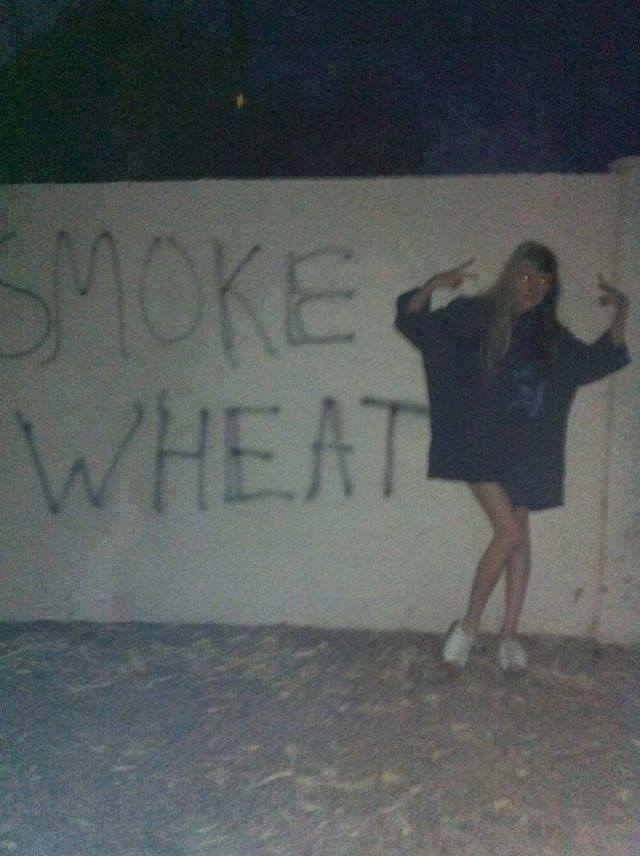 420 harvest it