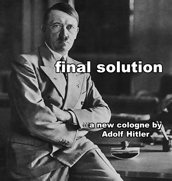 an analysis of adolf hitler as a german political and government leader
