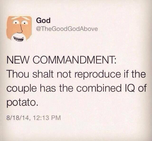 I'm a fan of the new Commandment.