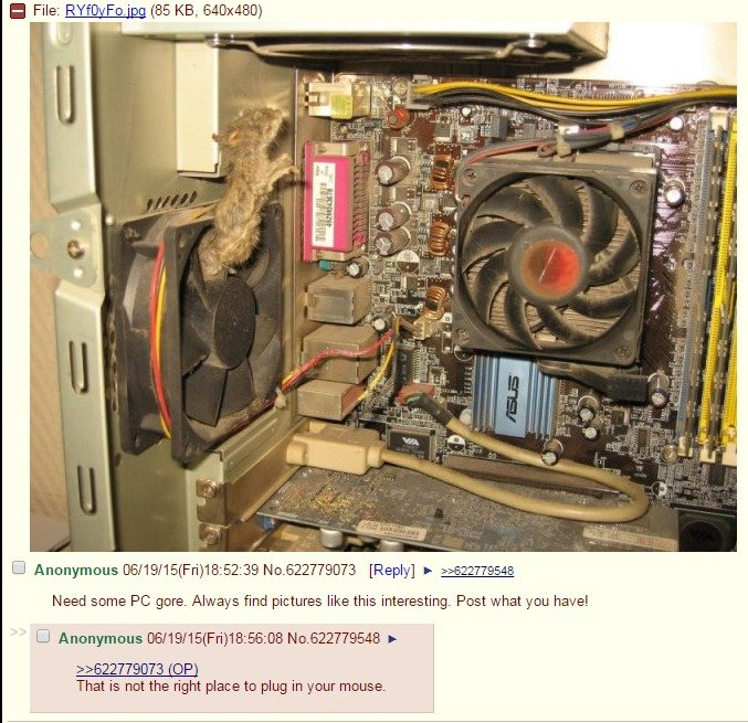 4chan gives the best tech support
