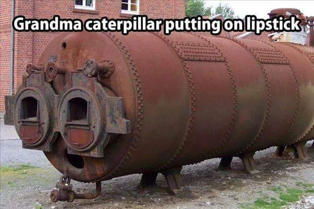 Grandma caterpillar...