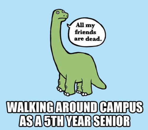 5th Year Students Be Like...