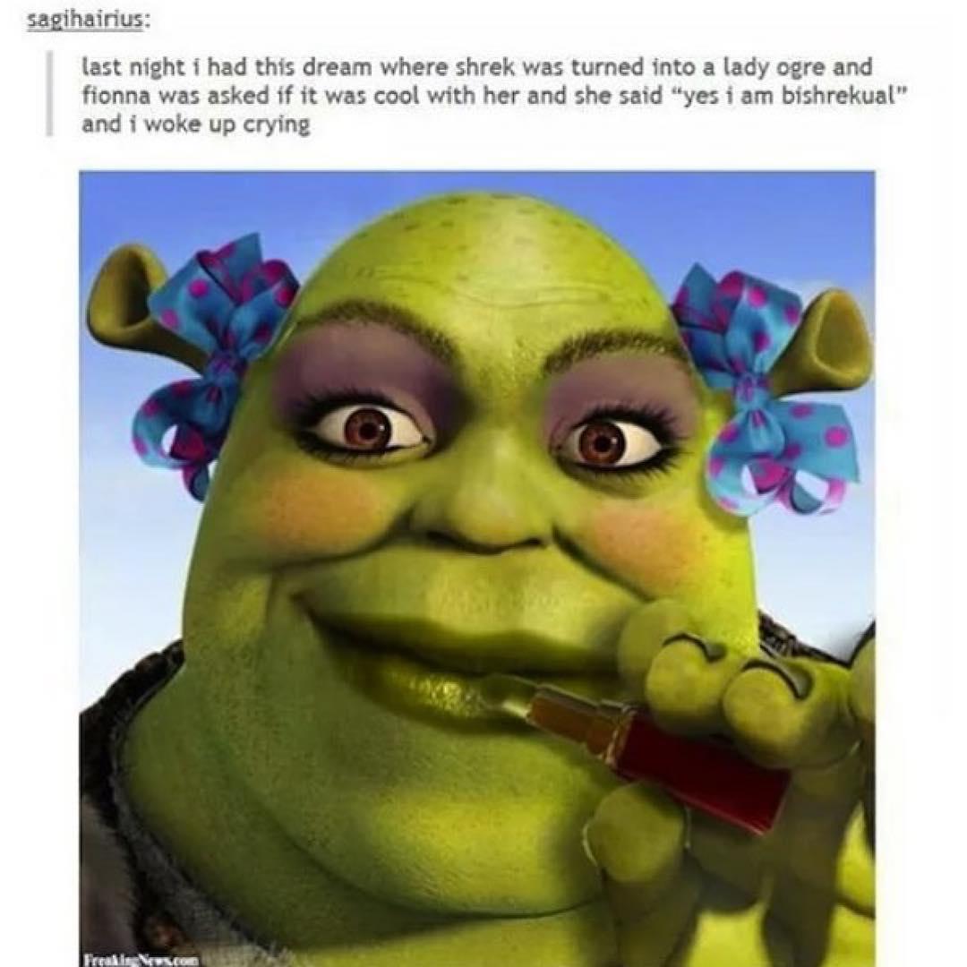 Shrek & fionna porn erotica pictures