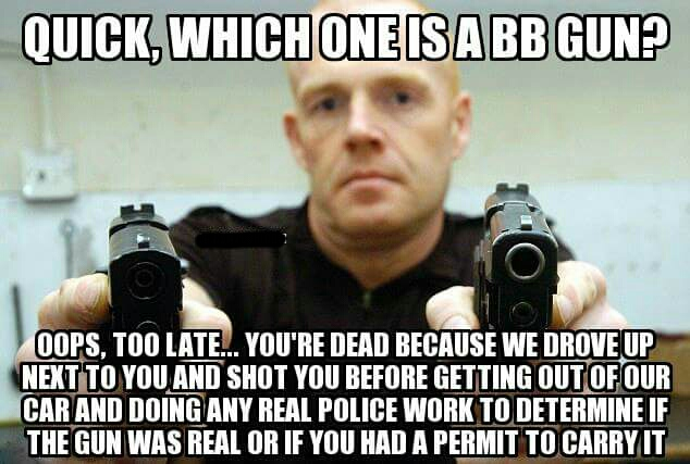 Because pointing BB guns at police officers is totally ...