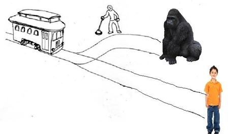 Trolley problems at the zoo