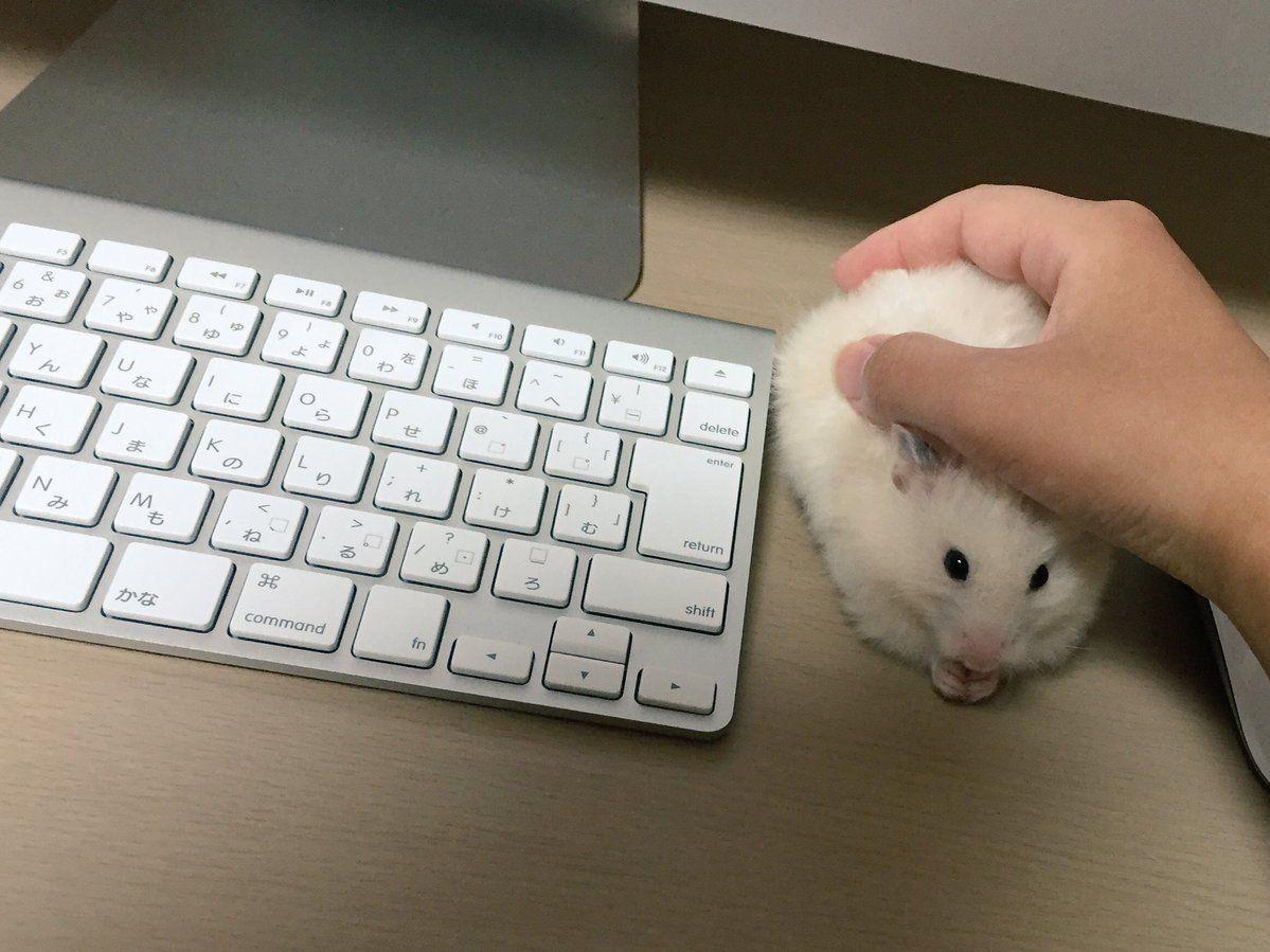 Как мышку сделать медленнее