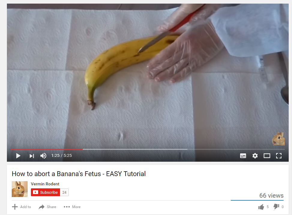 The things I find on Youtube...