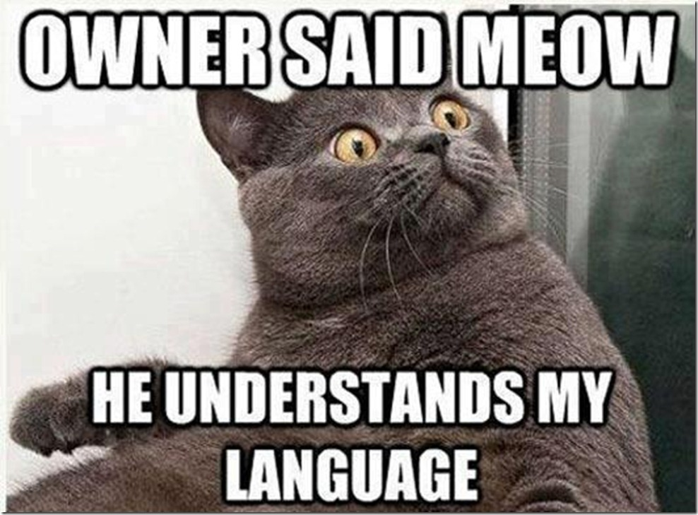Use the Local Language