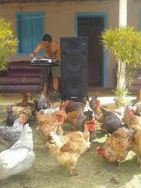finally found some chicks who actually show up at my party