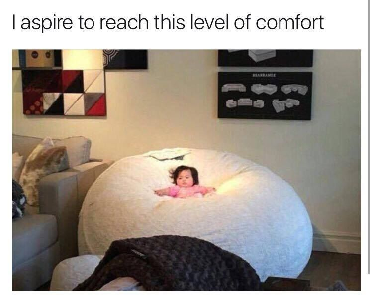 I aspire to be this level of comfort