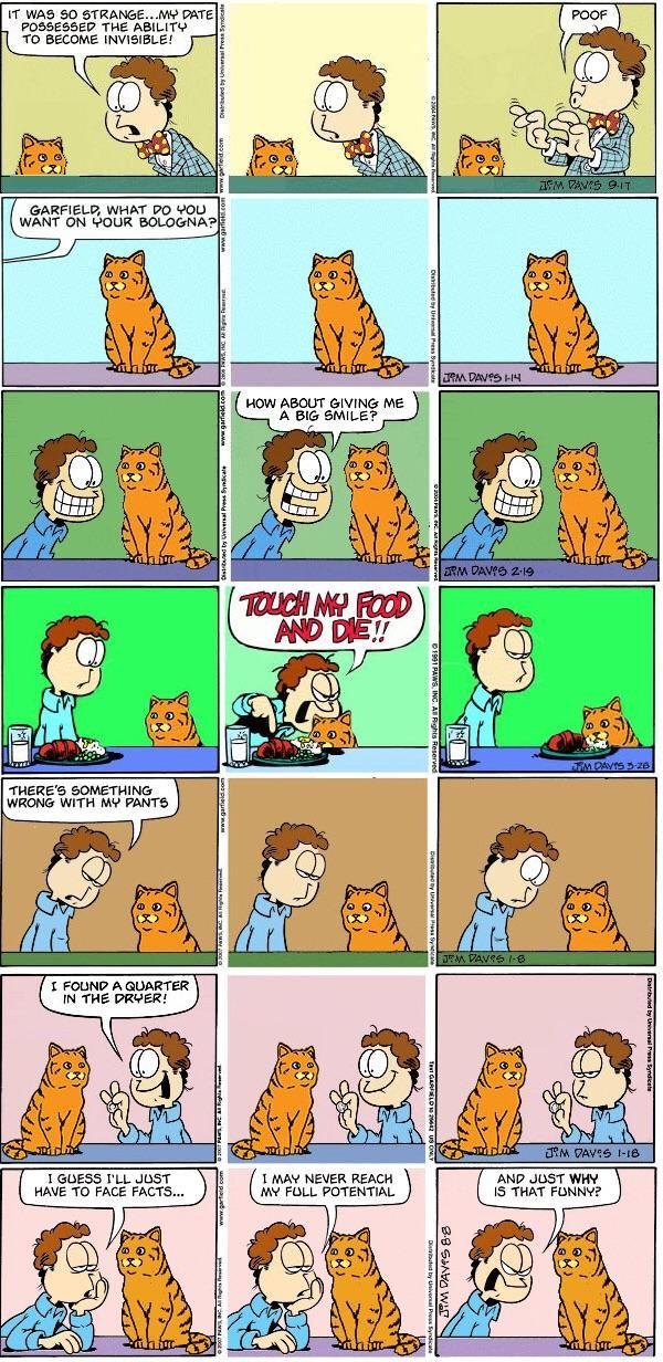 Garfield irl
