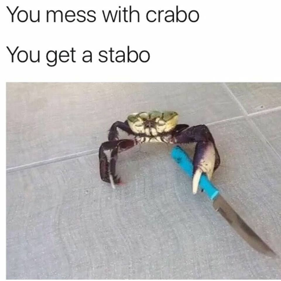 first gecko, now crabo