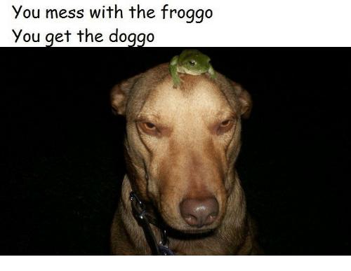 Froggo also a badass