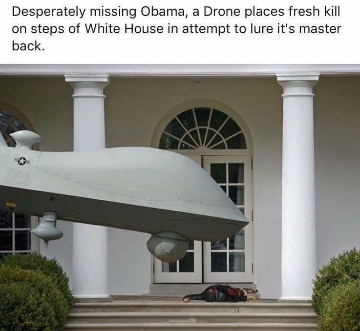Tomahawk missiles << Drones. Trump plz