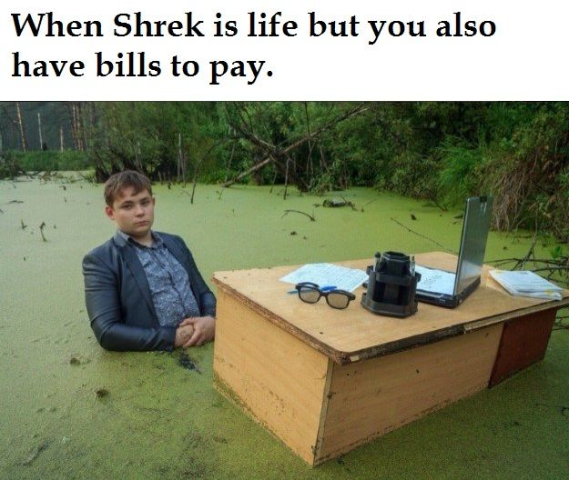 Here's some Shrekposting