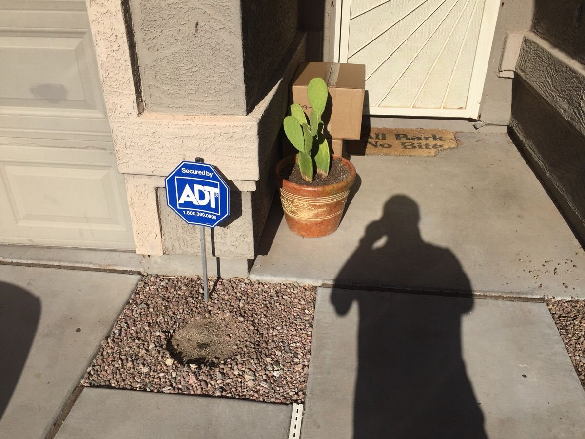 "UPS moved my potted cactus to ""hide"" two large packages."