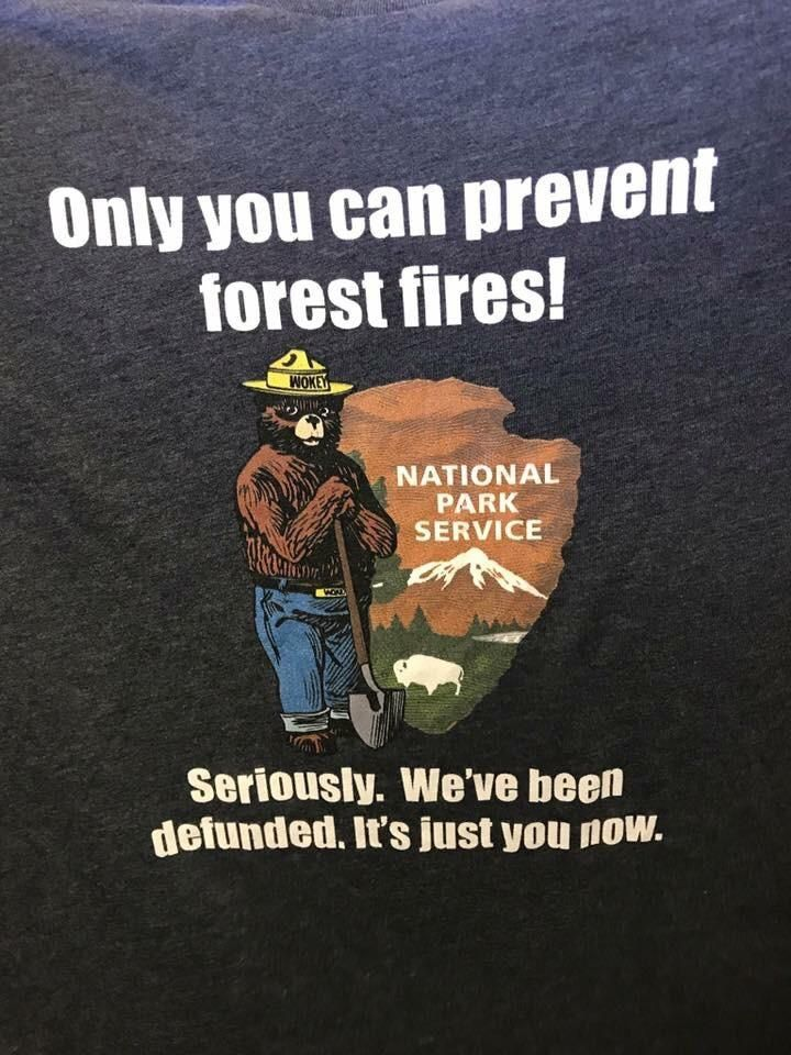 only you can prevent forest fires The robinson library: the robinson library  economics  advertising: smokey bear the official spokesman for the us forest service's only you can prevent forest fires campaign.