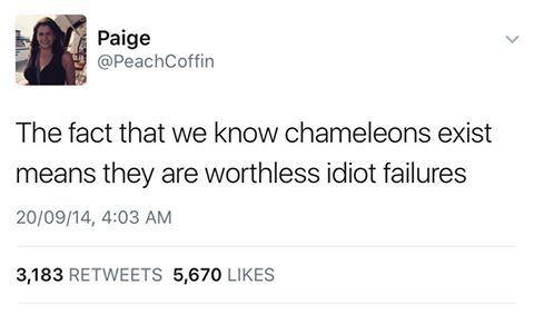 SHAME ON A CHAMELEON