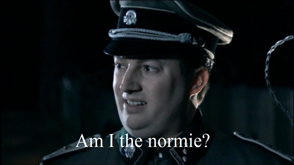 When you try to make an ironic meme about normies, but you get downvoted into oblivion