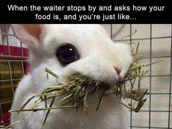 Every time I eat out