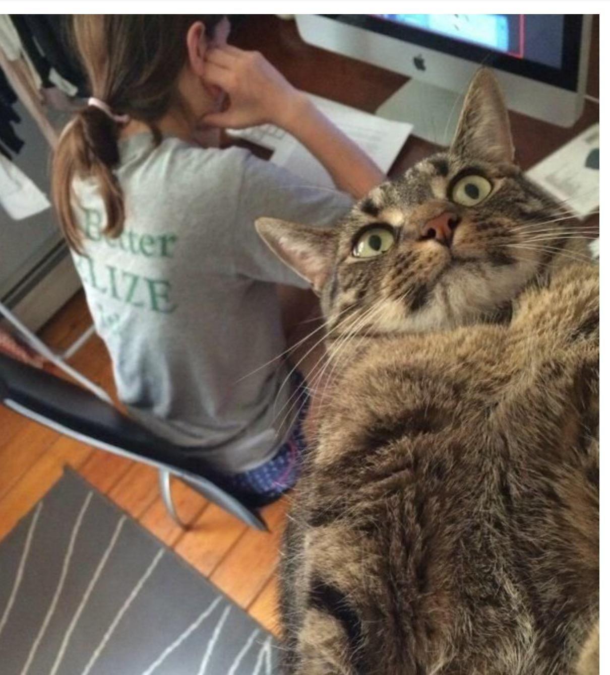 """See human, i can take stupid selfies too"""