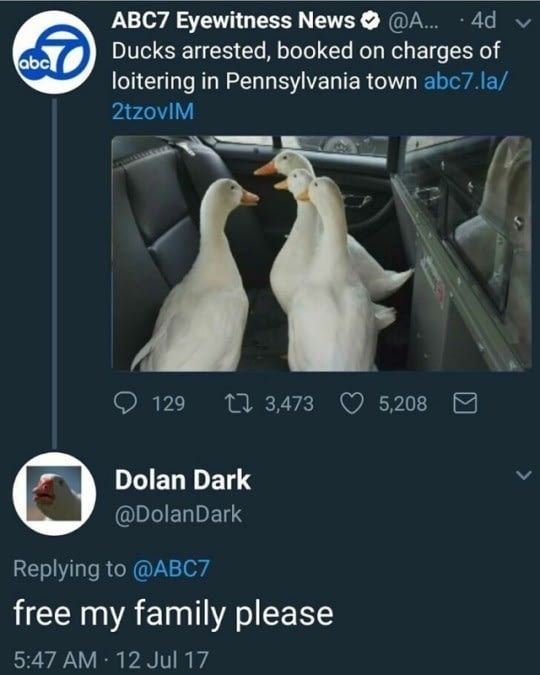 Subscribe to Dolan Dark
