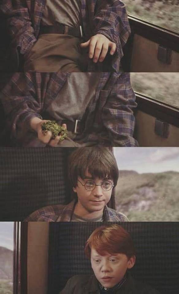 You're a dealer, Harry