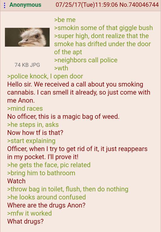 Anon bamboozles a cop