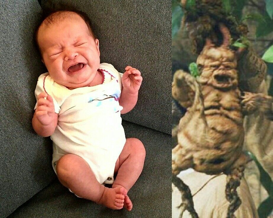 I'm fairly certain my niece is a mandrake.