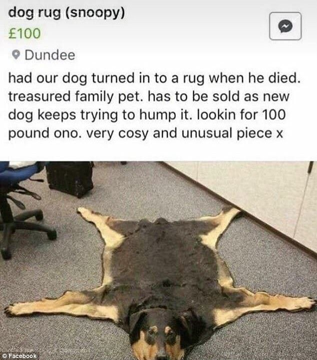 Dog rug (barely used) for sale
