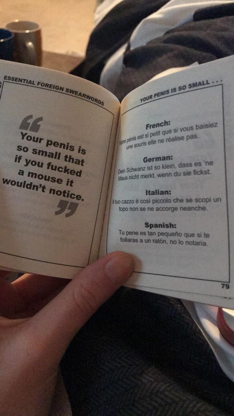 Essential foreign swear words