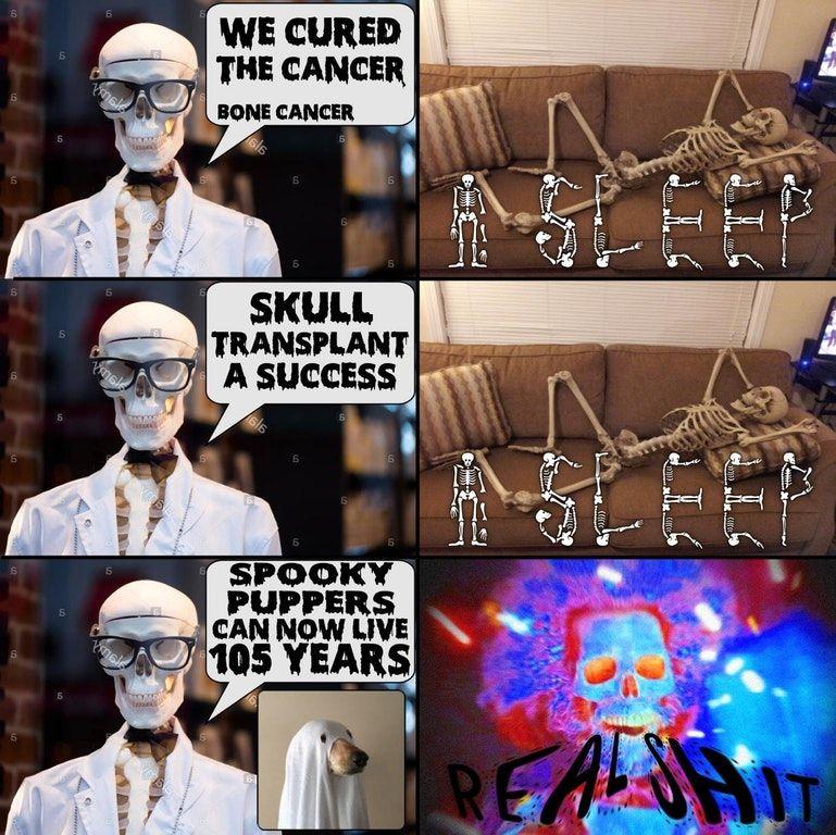 Why bones has not been postin