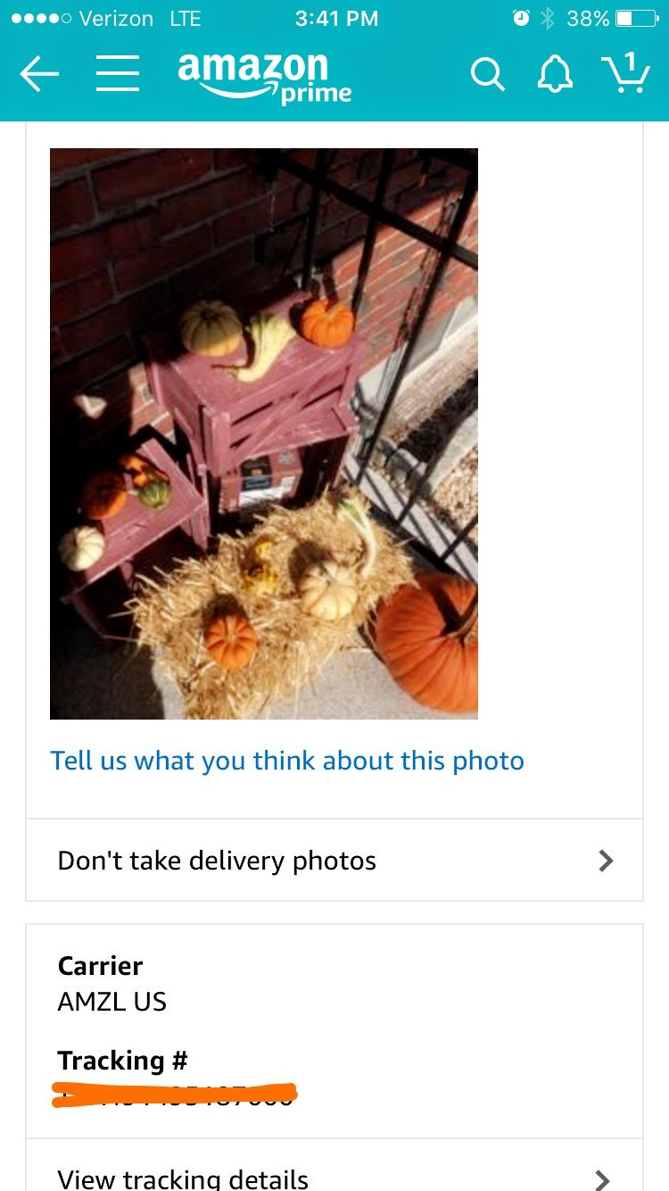 Got a text saying my Amazon package had arrived. Couldn't find it anywhere. Checked tracking history in the app and saw this picture.