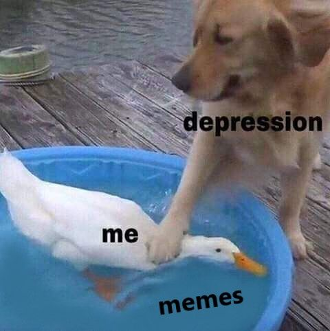memes are better than seeing a therapist.