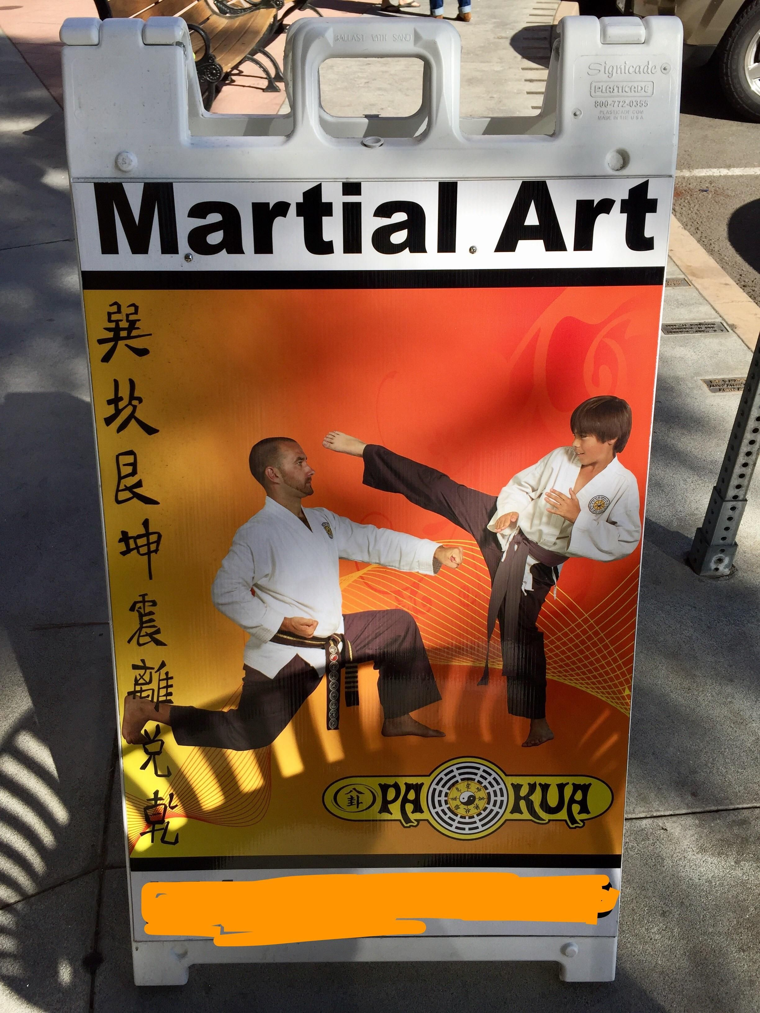 This dojo teaches you how to punch a kid square in the nuts.