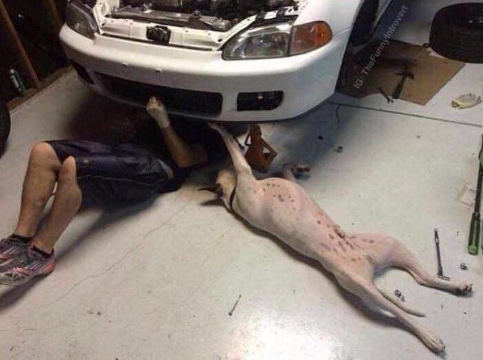 """""""Maybe there's a problem with the sub woofer.."""" """"Bob, this isn't the ***ing time"""""""