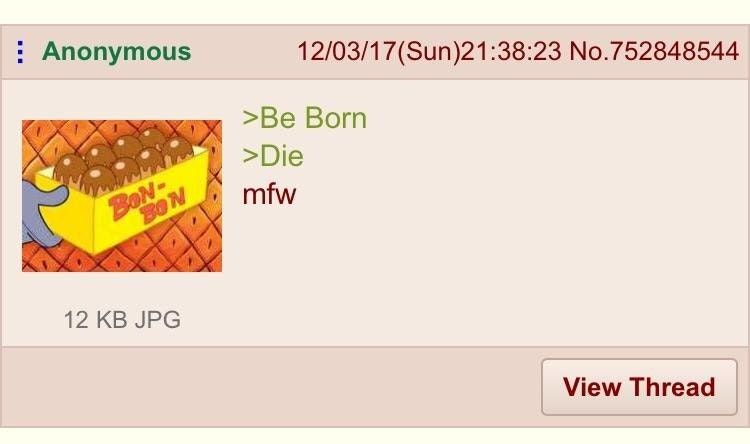 Anon in the best greentext ever