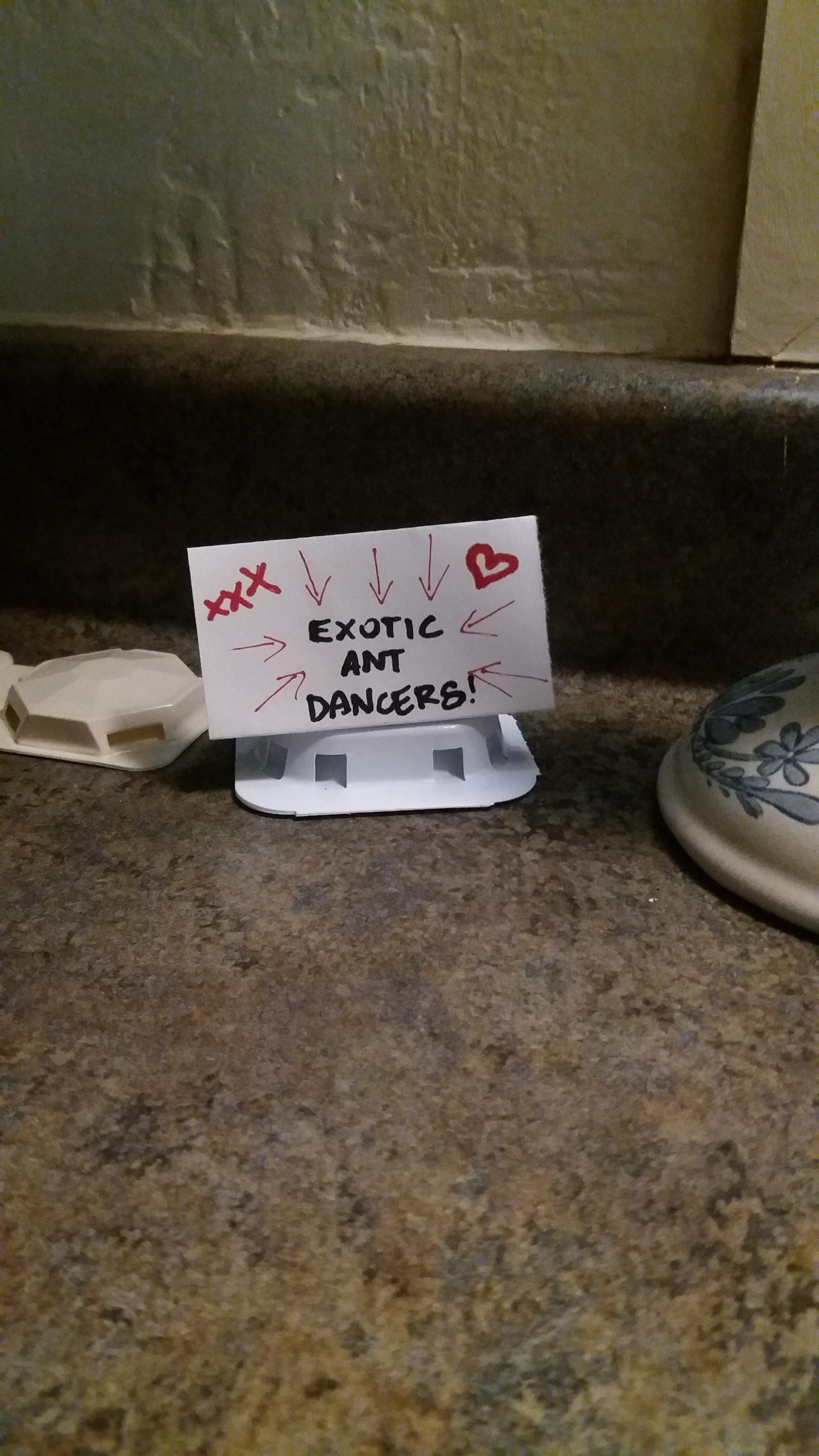 We have an ant problem. The husband is trying to make the ant traps more appealing.