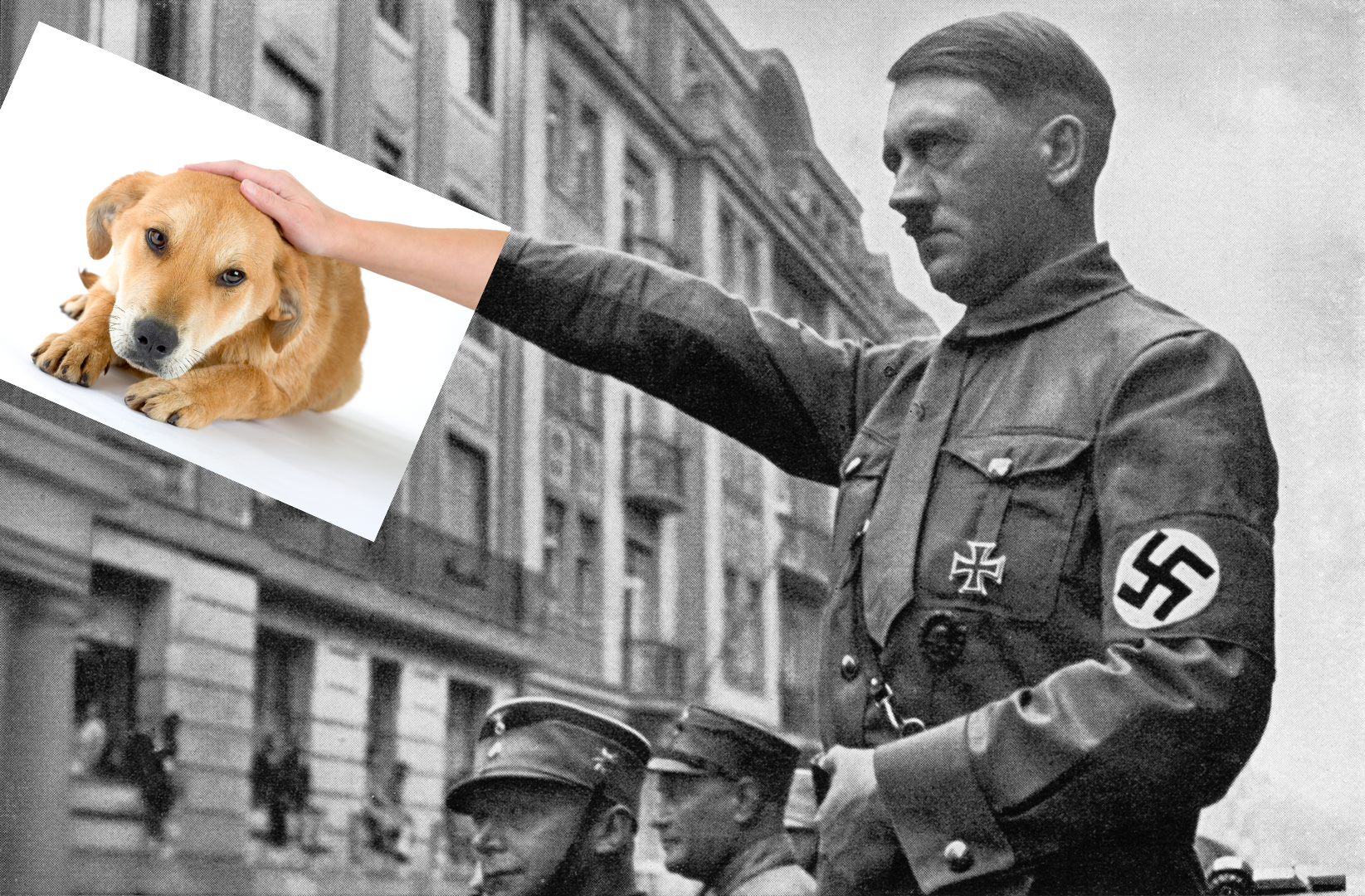 Hitler petting dog