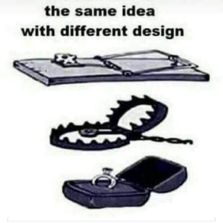 Same idea, different design
