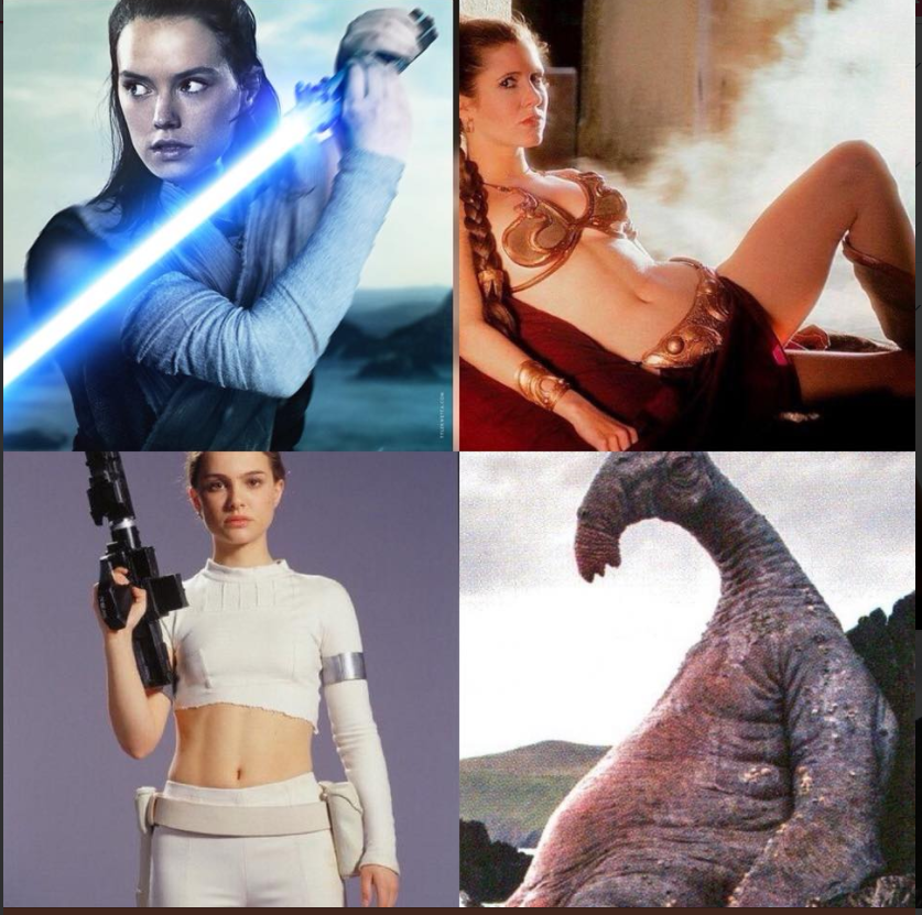 The Babes Of Star Wars