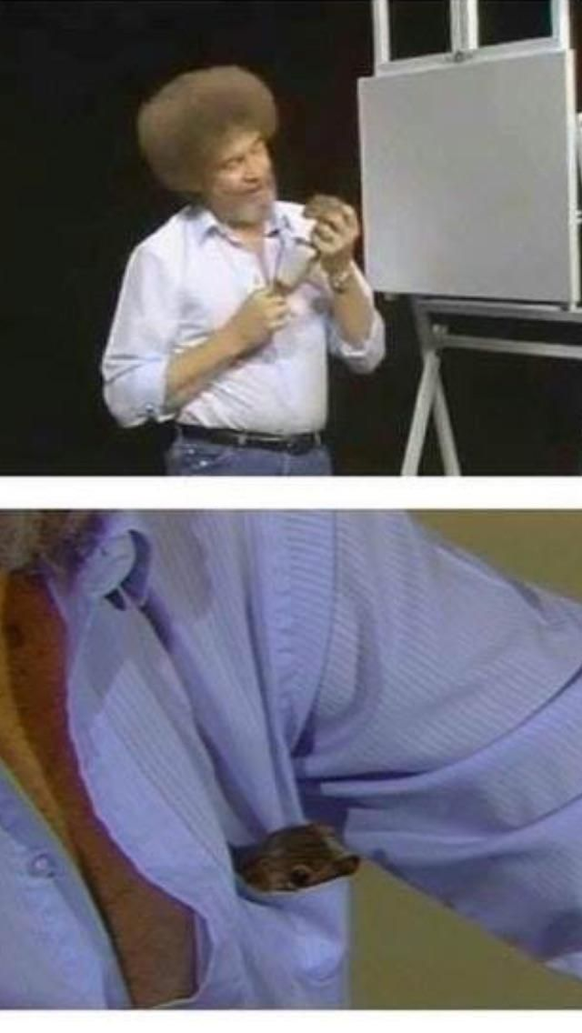 Whenever you need a giggle, remember when Bob Ross put a squirrel in his shirt pocket so they could enjoy his painting