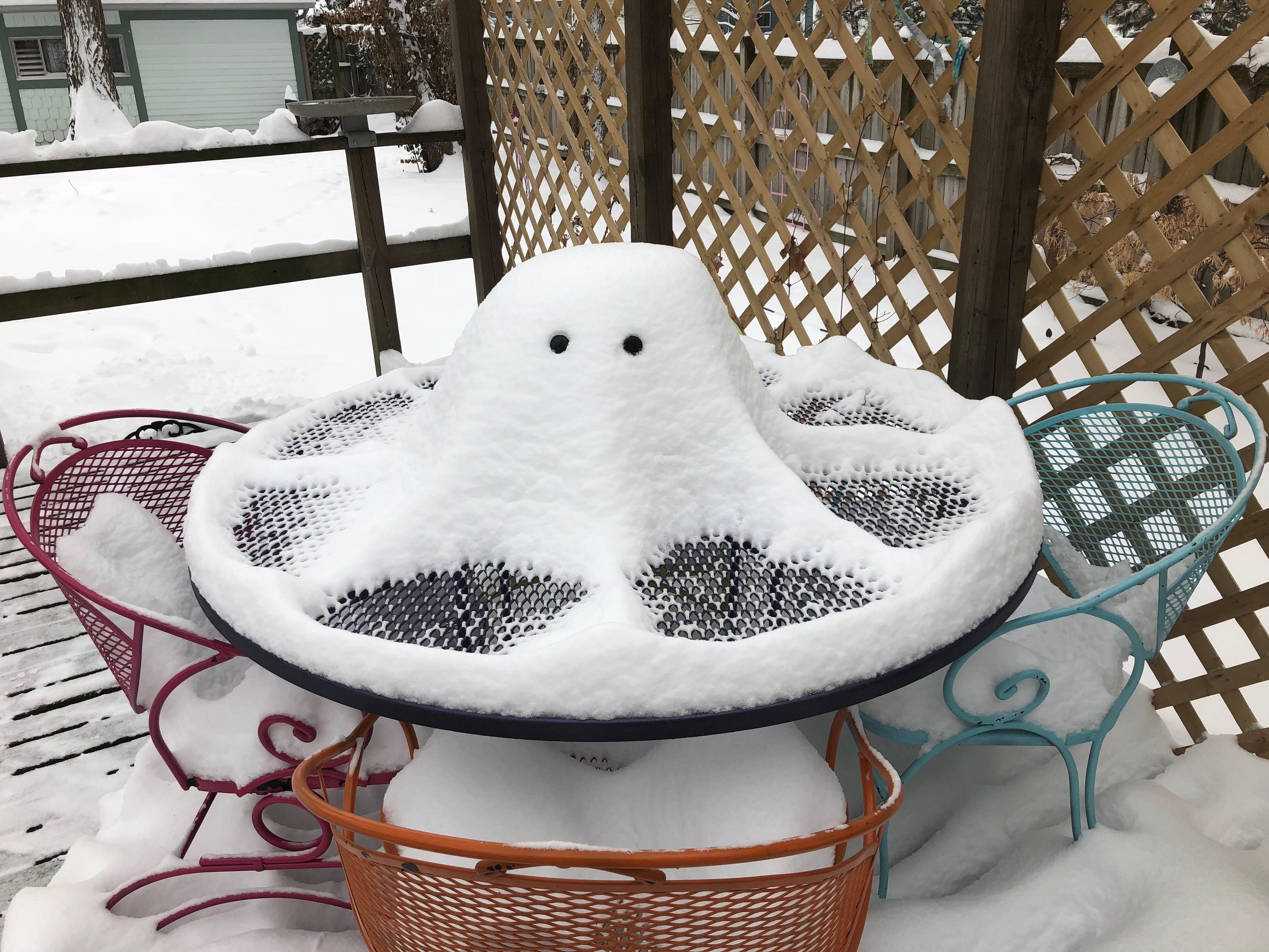 Snow Octopus
