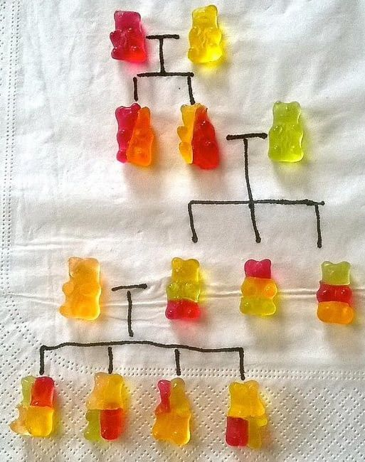 Genetics for dummies.