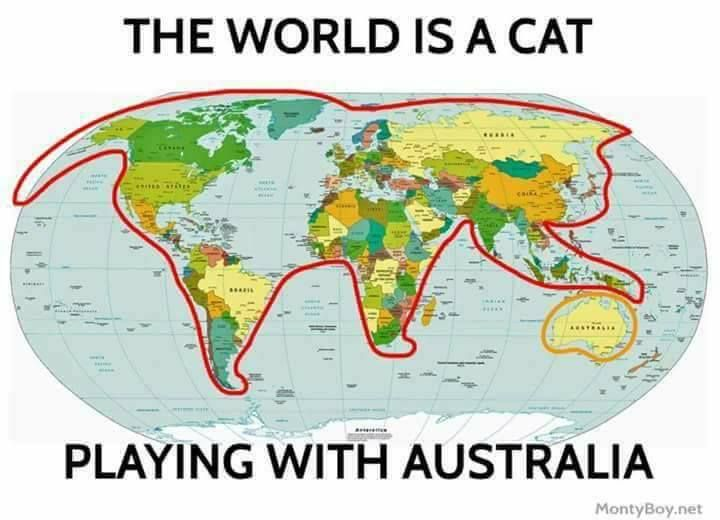 The world is a cat playing with Australia.