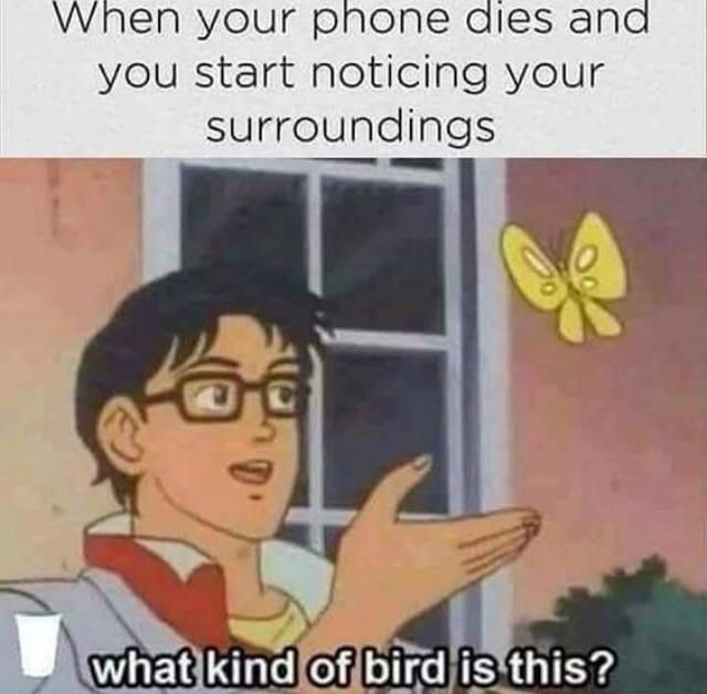 When your phone dies and you start noticing your surroundings