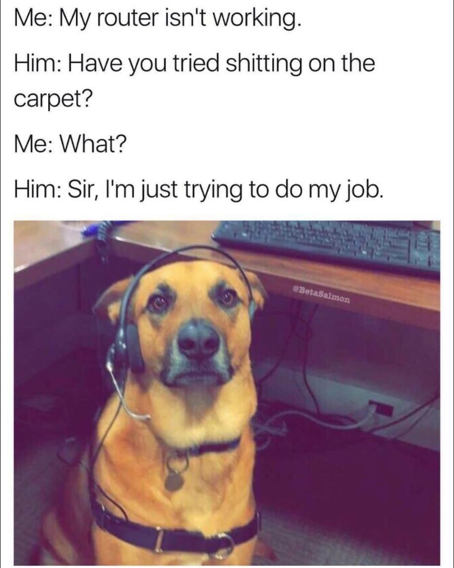 Tech Support Doggo